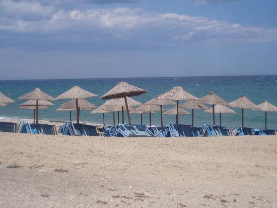 Hotel El Puntazo: Beach
