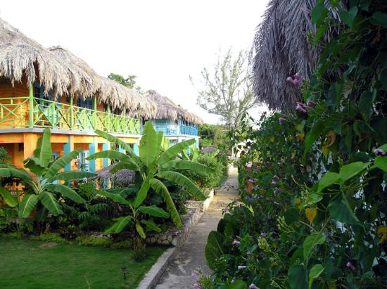 Negril Escape Resort & Spa: Cottages and gardens