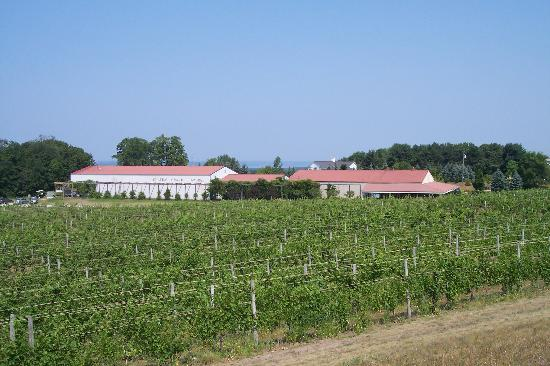 The Inn at Chateau Grand Traverse: The CGT winery (from the road)