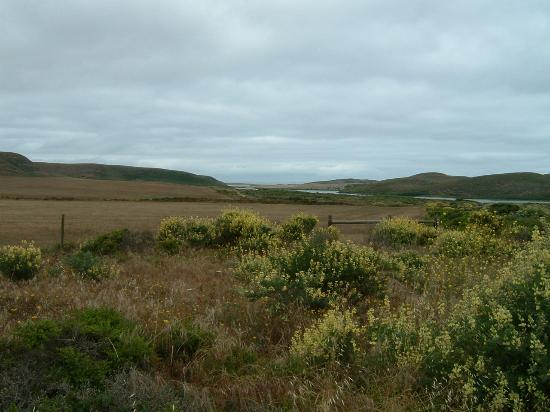 Point Reyes Seashore Lodge: Trail to Abbott's Lagoon