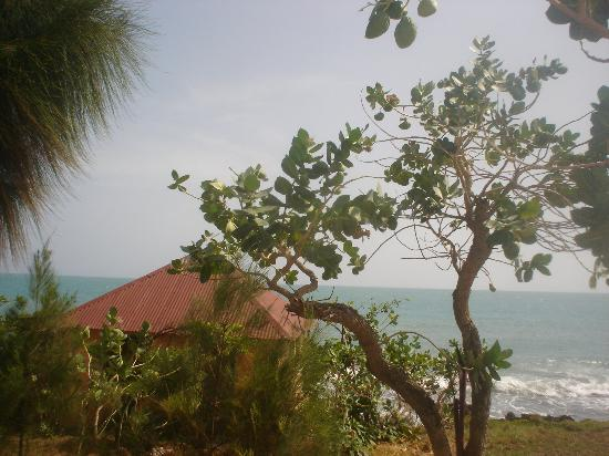 Jakes Hotel, Villas & Spa: View from cottage @ Jakes
