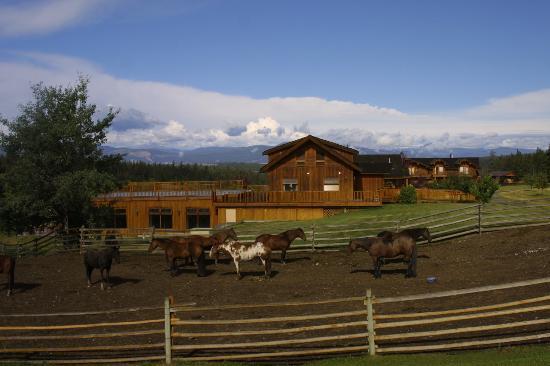 Echo Valley Ranch & Spa: towards the main building
