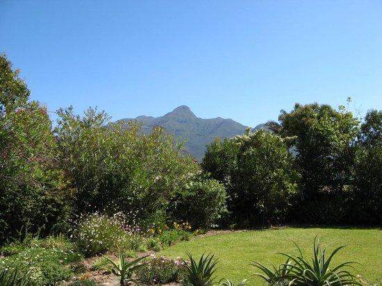 In de Soete Suykerbol : The garden view from our room