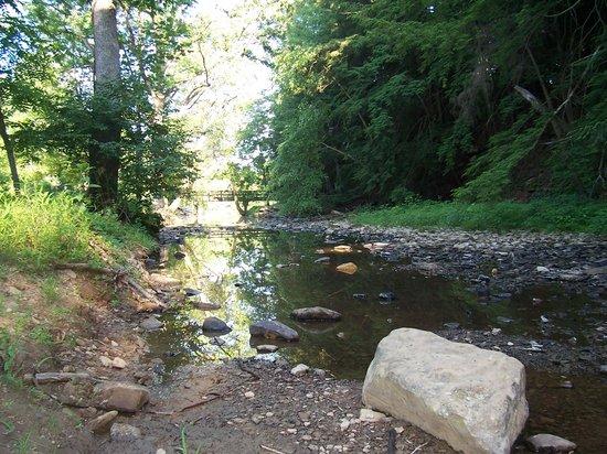 Shawnee State Park: creek by campground