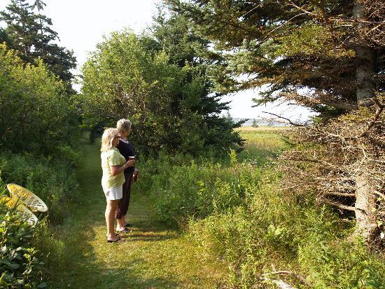 Clark's Sunny Isle Motel: A walk to the bay