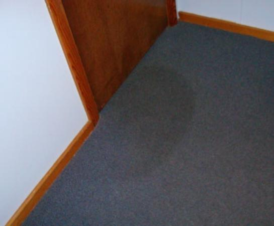 The Seacrest Inn: the stain on the carpet