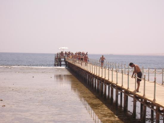 Park Inn by Radisson Sharm El Sheikh Resort: the beach