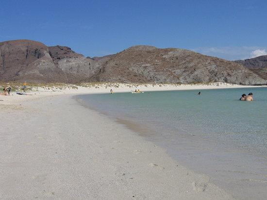La Paz, Mexique : La playa Balandra, da non perdere