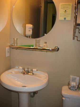 Anne Ma Soeur Anne: Bathroom in Room 28