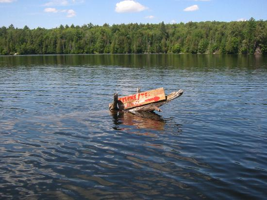 Beauview Cottage Resort: Lake Signs while canoeing