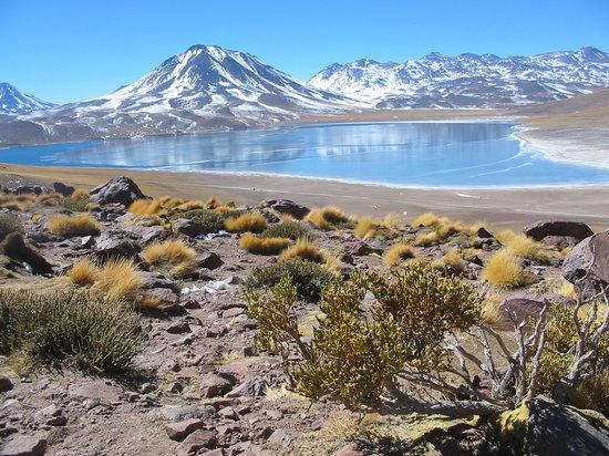 Сан-Педро-де-Атакама, Чили: Altiplanic Lake