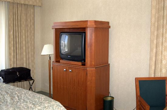 InterContinental Suites Hotel Cleveland: TV in Armoire
