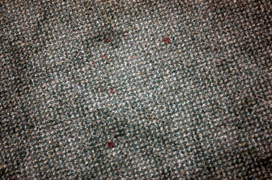 InterContinental Suites Hotel Cleveland : Carpet Stains - Trail of red spots