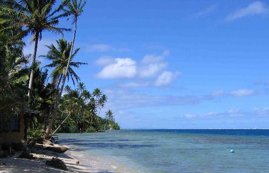Motu Pearl Farm: La plage à côté des du centre