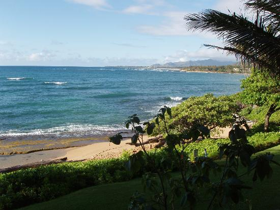 Kapaa Sands: And this is the view to the south.