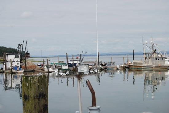 Fishing boats at the marina in Nahcotta, WA
