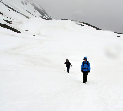 Whistle Stop Lodging: Hike to Harding Ice Field