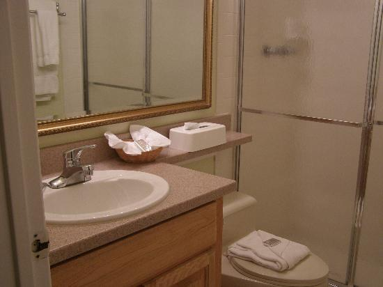 Ventura Resort: Down Stairs Bathroom