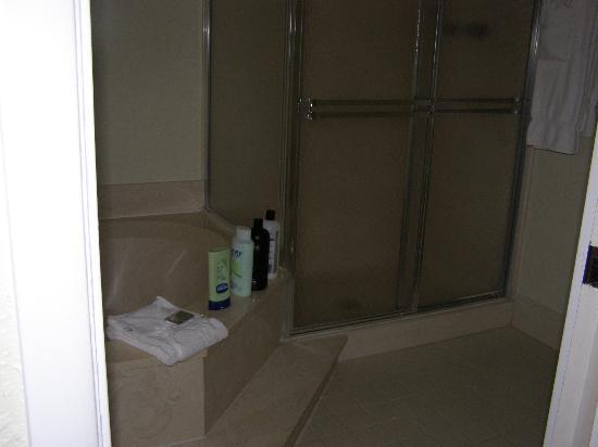 فينتورا أت بوكا راتون: Master Bathroom