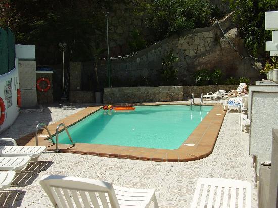 Monte Verde Apartments: Pool