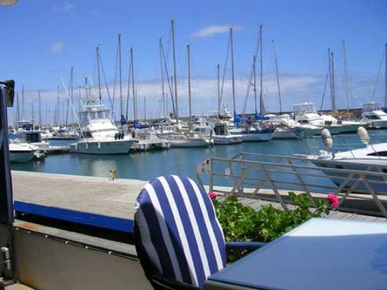 Hotel Costa Calero: view of harbour 2 mins from hotel
