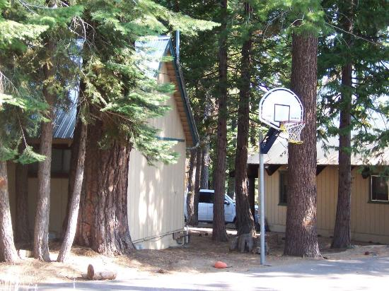 ‪تاهوما لودج: Back of Alder cabin with basketball hoop‬