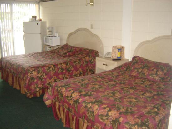 Warm Mineral Springs Motel: beds
