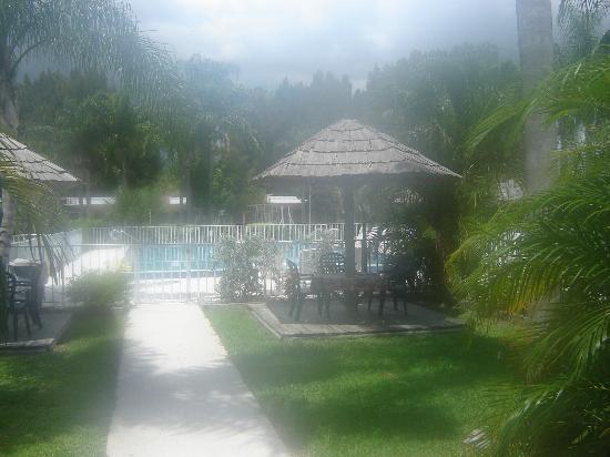 Warm Mineral Springs Motel: pool