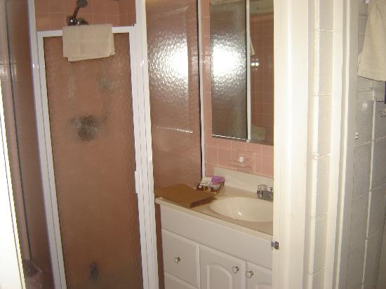 Warm Mineral Springs Motel: bathroom