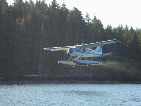 Afognak Wilderness Lodge: departing sea plan
