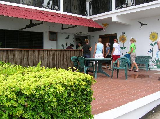 Hokol Kin Guesthouse: The Patio