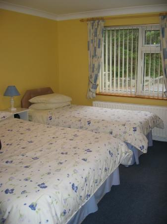 Bay View Bed and Breakfast: room pic