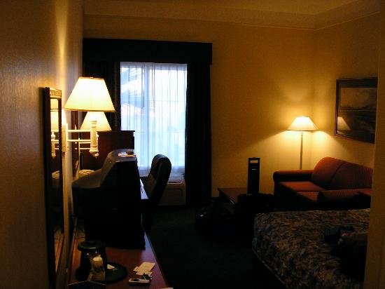 La Quinta Inn & Suites Fredericksburg: Average size king room