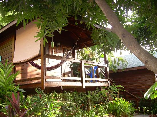 West Bay Lodge and Spa: our bungalow at west bay lodge