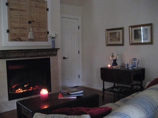 Blue Willow Bed and Breakfast: The fireplace was delightful!