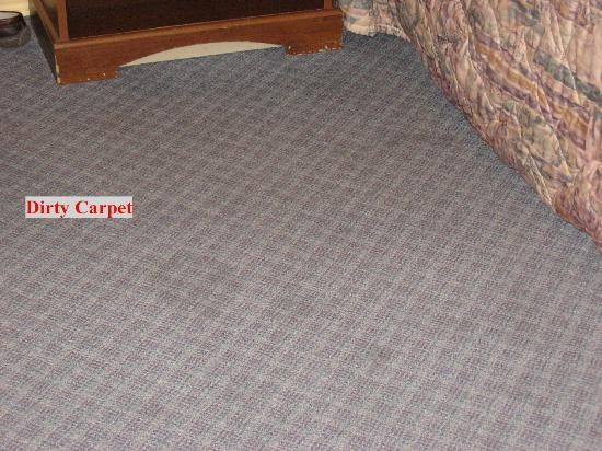 Red Roof Inn Bishop: Dirty Carpet