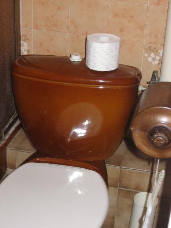 Hotel Carlone: Toilet - better than room 19 that has no door!