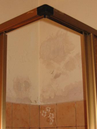 Hotel Carlone: Bathroom