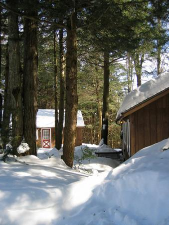Stowe Cabins in the Woods: standard cabin
