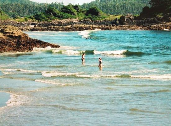 Chesterman Beach: time for a dip