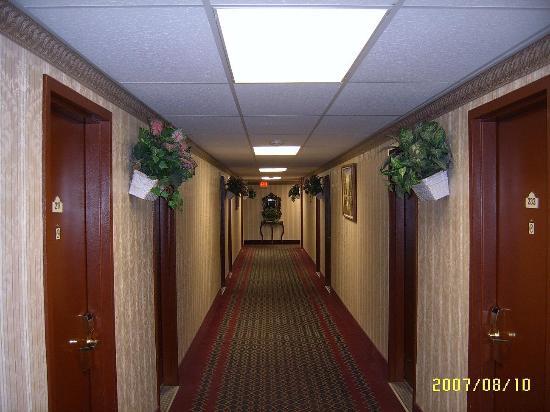 Red Carpet Inn Elmwood Park : Main level