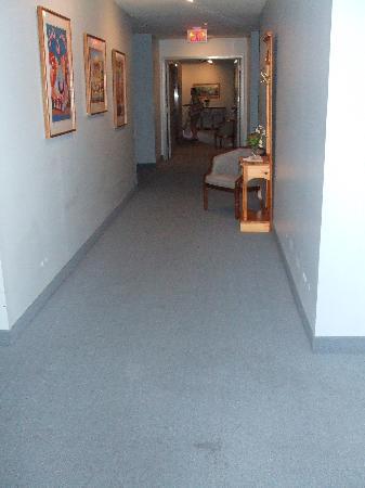 Sag Harbor Inn : Hallway (note condition of carpet)