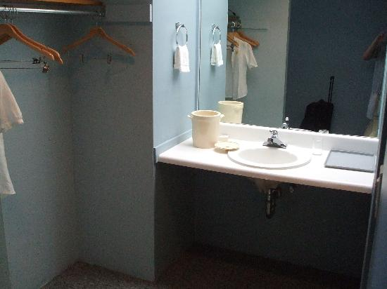 Sag Harbor Inn: 2 sinks by the bathroom - too bad they look like this!