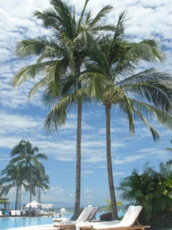 Grand Velas Riviera Nayarit: Palms