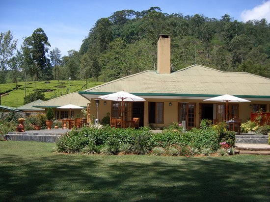Ceylon Tea Trails: Norwood Bungalow