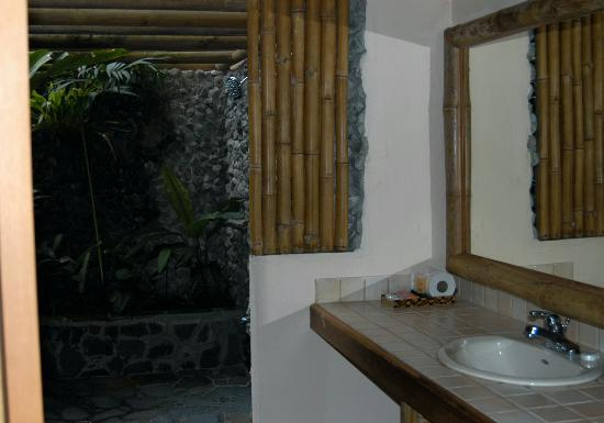 Lost Iguana Resort & Spa: A large bathroom with an extraordinary shower