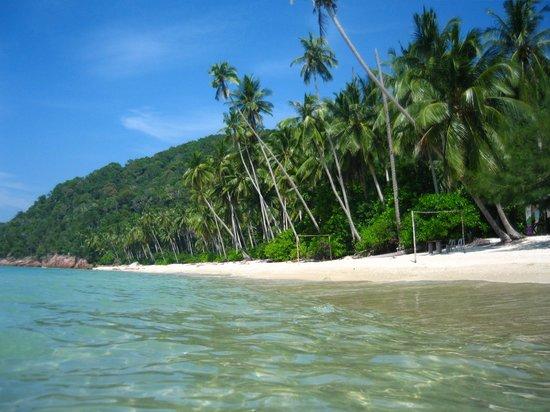 Mozana Redang Resort : Tg. Bakau, your