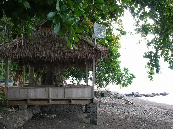 Murex Dive Resort: Huts along the shoreline