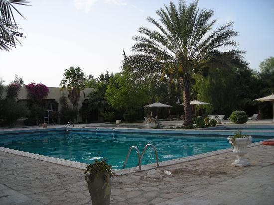 Hotel Sahara Douz: Piscina exterior