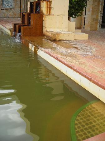 Hotel Sahara Douz: Detalle de la piscina interior